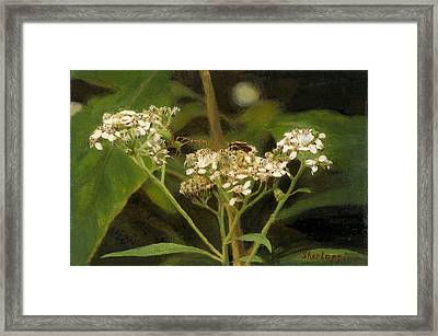 Blind Love Framed Print by Sherryl Lapping