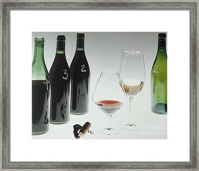 Blind Taste Test Framed Print by Jerry McElroy