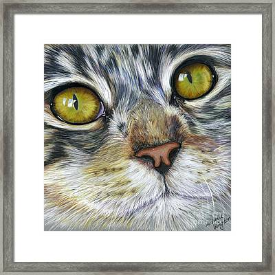 Stunning Cat Painting Framed Print by Michelle Wrighton