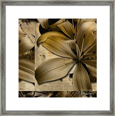 Bliss II Framed Print by Yanni Theodorou