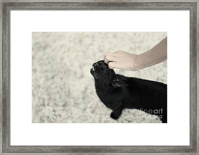 Bliss Number 2 Framed Print by Jasna Buncic