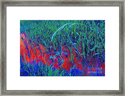 Bloody Battle Of New Orleans 1 Framed Print by Alys Caviness-Gober