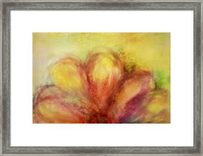 Bloom  Framed Print by Ann Powell