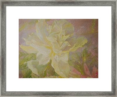 Blooming Peony Framed Print by J Michael Orr