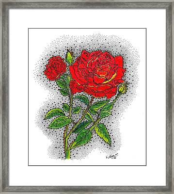 Blooming Too Framed Print by Glenn McCarthy Art and Photography