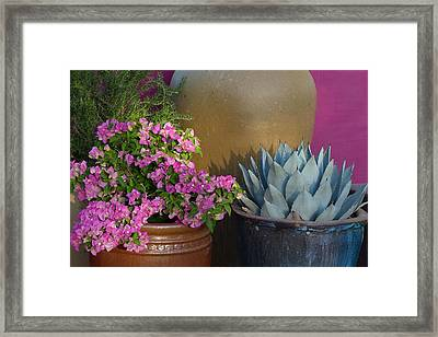 Blooming With Beauty Framed Print by Cindy McDaniel