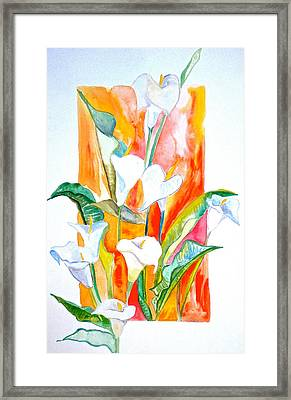 Blooms Beyond Borders Framed Print by Debi Starr