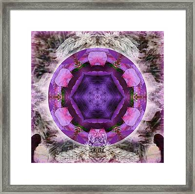 Blossoming Framed Print by Alicia Kent
