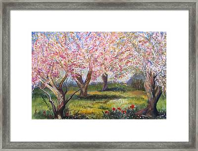 Blossomtime Framed Print by Jacqueline Pearson