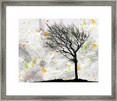 Blowing It The Wind Framed Print by Edmund Nagele