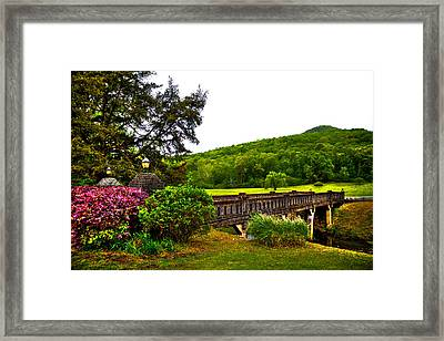 Blowing Spring Park Framed Print by David Patterson