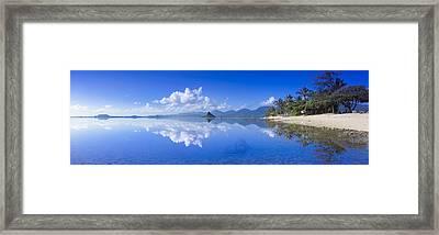 Blue Mokolii Framed Print by Sean Davey