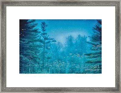 Blu Framed Print by Sue OConnor