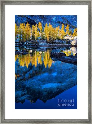Blue And Yellow Framed Print by Inge Johnsson
