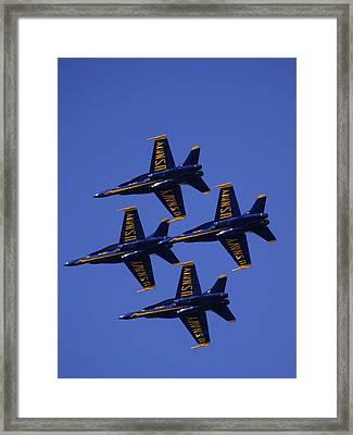 Blue Angels Framed Print by Bill Gallagher