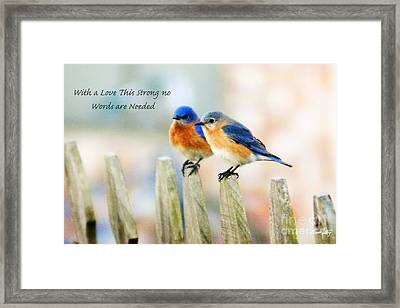 Blue Bird Love Notes Framed Print by Scott Pellegrin
