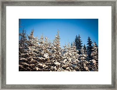Blue Blue Sky Framed Print by Robert Hellstrom