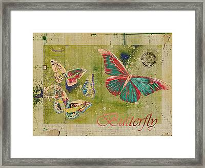 Blue Butterfly Etc - S55ct01 Framed Print by Variance Collections