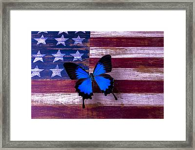 Blue Butterfly On American Flag Framed Print by Garry Gay