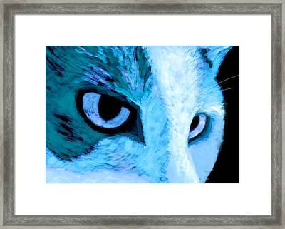 Blue Cat Face Framed Print by Ann Powell