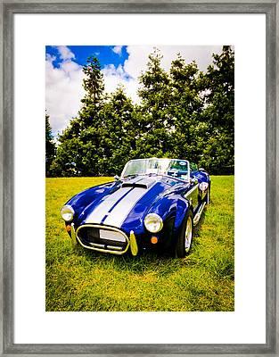 Blue Cobra Framed Print by Phil 'motography' Clark