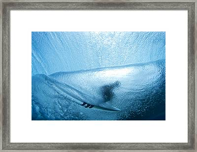 Blue Cocoon Framed Print by Sean Davey
