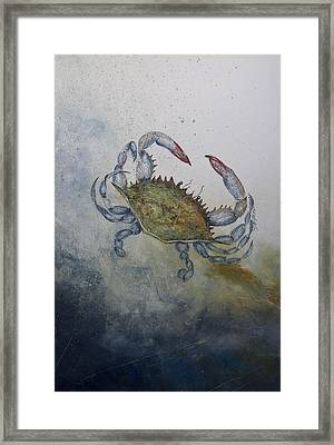 Blue Crab Print Framed Print by Nancy Gorr