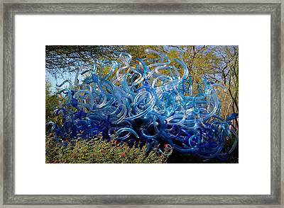Blue Fiori Sun Framed Print by Aaron Burrows