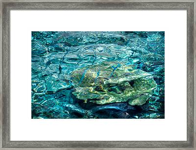 Blue Fishes In Blue Water Framed Print by Jenny Rainbow