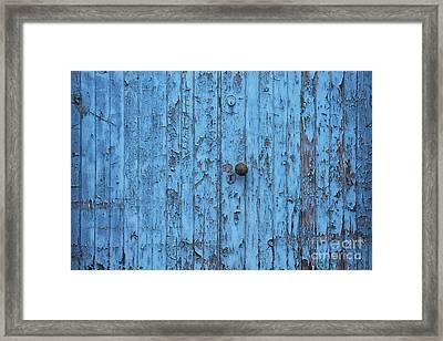 Blue Ish  Framed Print by Tim Gainey