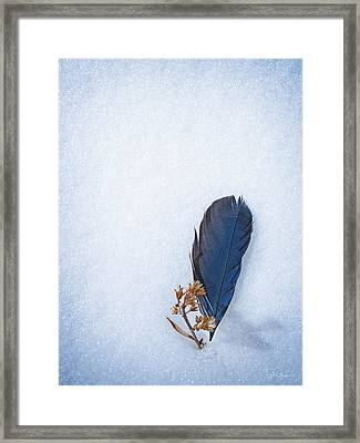Blue Jay Feather On Snow Framed Print by Julie Magers Soulen