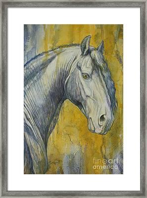 Blue Knight Framed Print by Silvana Gabudean