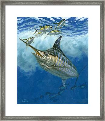 Blue Marlin And Yellowfin Tuna Framed Print by Don  Ray