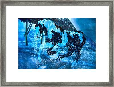 Blue Moon Framed Print by Betsy Knapp