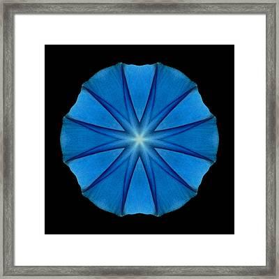 Blue Morning Glory Flower Mandala Framed Print by David J Bookbinder
