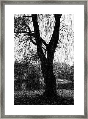 Blue Mountain Pond Framed Print by Paul Gioacchini