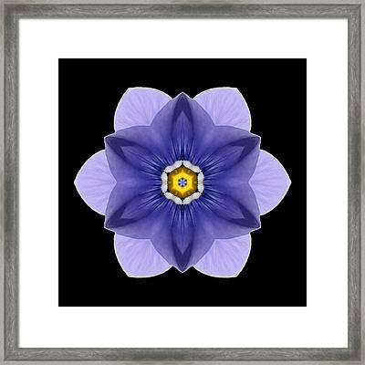 Blue Pansy I Flower Mandala Framed Print by David J Bookbinder