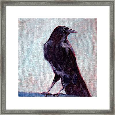 Blue Raven Framed Print by Nancy Merkle