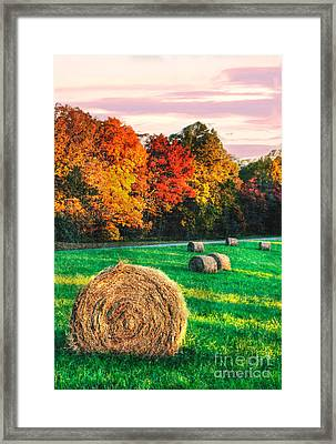 Blue Ridge - Fall Colors Autumn Colorful Trees And Hay Bales II Framed Print by Dan Carmichael
