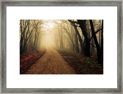 Blue Ridge Parkway In The Fog Framed Print by Maria Jaeger