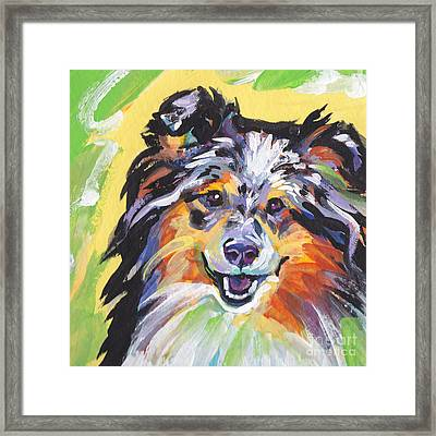 Blue Sheltie Framed Print by Lea S