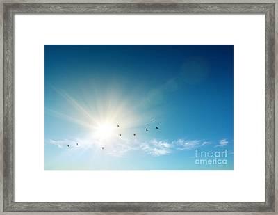 Blue Sky Framed Print by Carlos Caetano