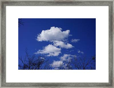 Blue Sky White Fluffy Clouds Art Prints Tree Branches Framed Print by Baslee Troutman