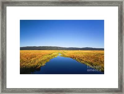 Blue Stream In Cascade Idaho Framed Print by Vishwanath Bhat