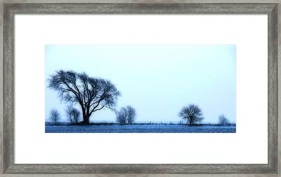 Blue Treeline Framed Print by Kimberleigh Ladd
