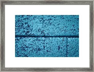 Blue Velvet Framed Print by Tom Gowanlock