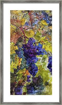 Blue Grapes Framed Print featuring the mixed media Blue Wine Grapes Watercolor And Ink by Ginette Callaway