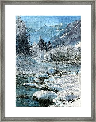 Blue Winter Framed Print by Mary Ellen Anderson