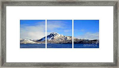 Blue Winter Triptych Framed Print by Barbara Griffin