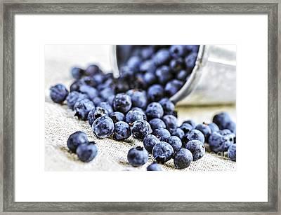 Blueberries Framed Print by Elena Elisseeva